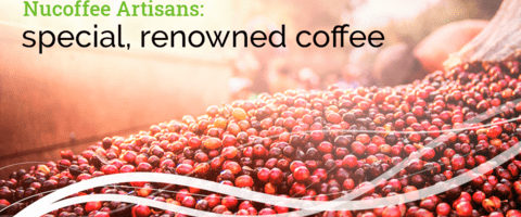 Nucoffee Artisans: special, renowned coffee