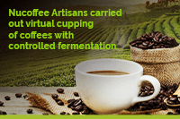 nucoffee_artisans_cupping_virtual_eng