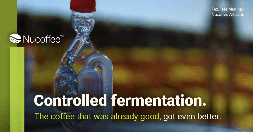 Controlled fermentation: The coffee that was already good, got even better